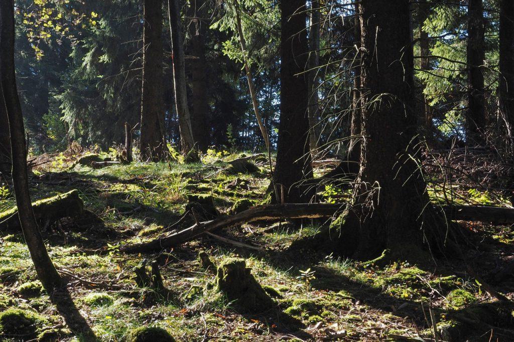 Teaser Tourismus in Schutzgebieten