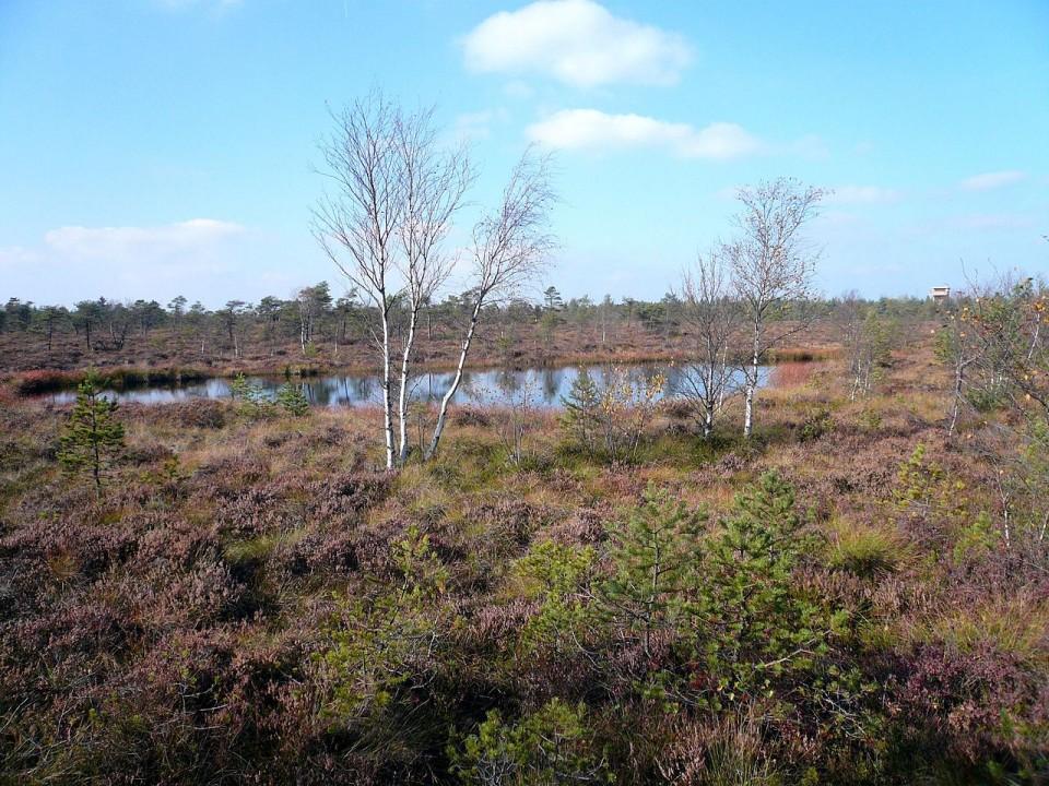Natura 2000 Naturparke