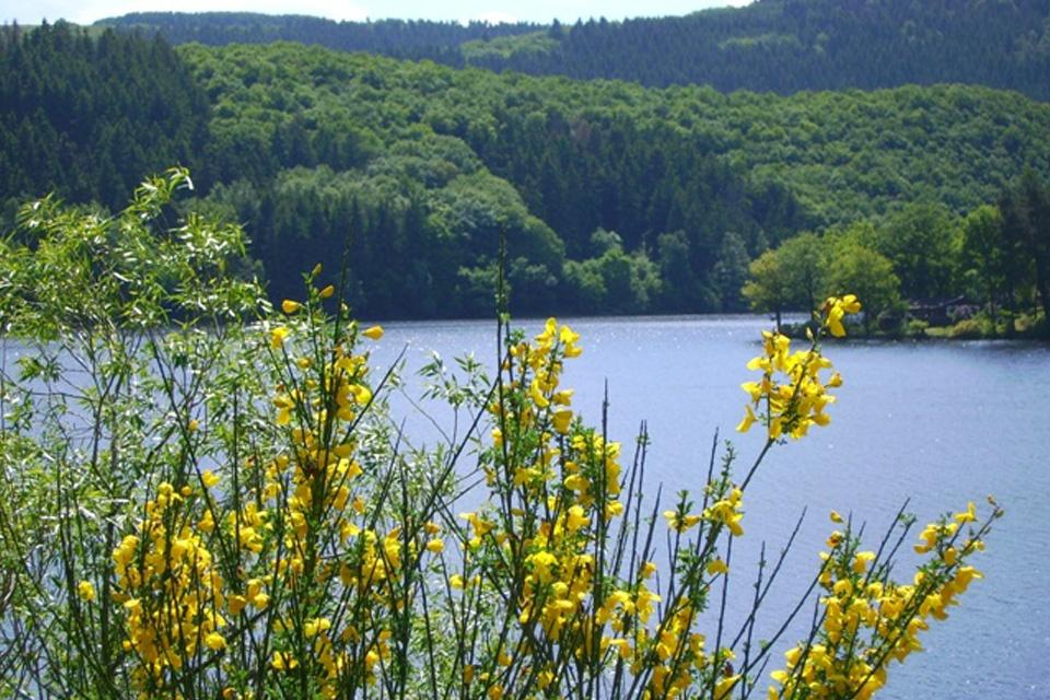 Grenzüberschreitender Naturparkplan Hohes Venn - Eifel