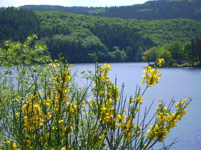 Titel-Naturparkplan-Eifel